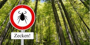 Zeckenschutz und Zecken sicher entfernen